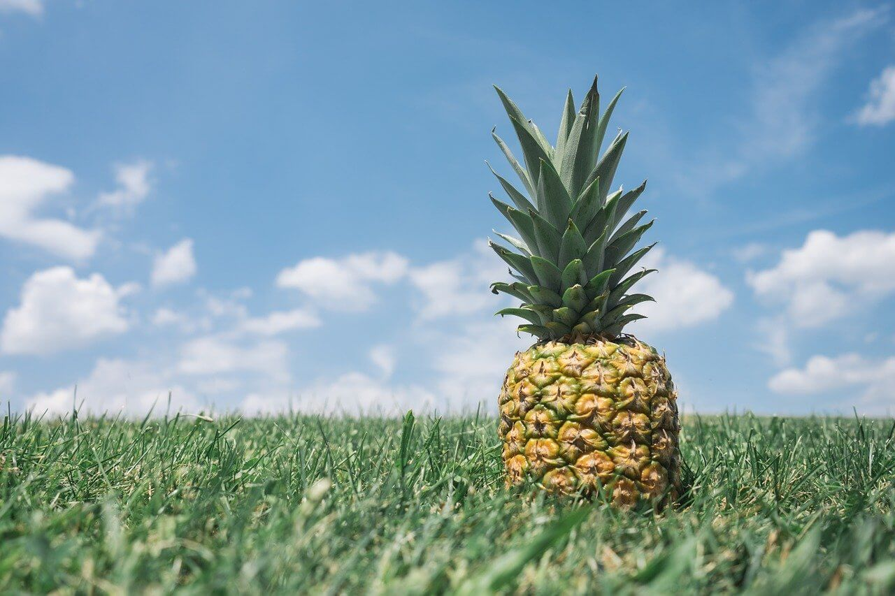 Ananas-Kirschmarmelade