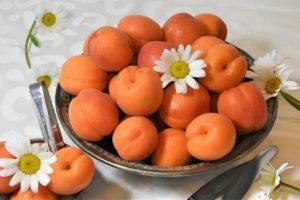 Kirsch-Aprikose-Marmelade