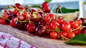 Kirsch-Waldfrucht-Marmelade