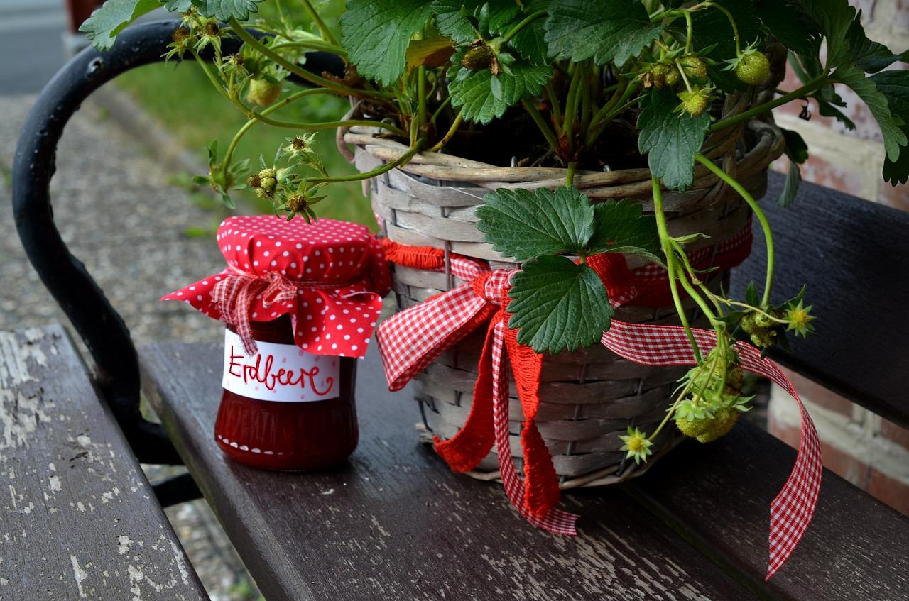 Erdbeermarmelade Rezept selber machen