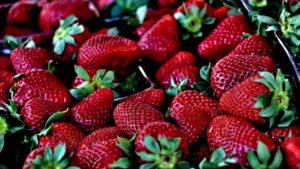 Erdbeer-Rotweinmarmelade einkochen