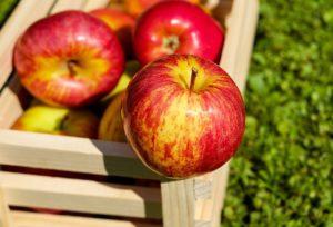 Erdbeer-Apfel-Marmelade einkochen