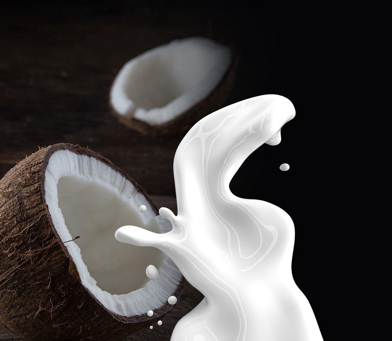 Erdbeermarmelade mit Kokosmilch selber machen
