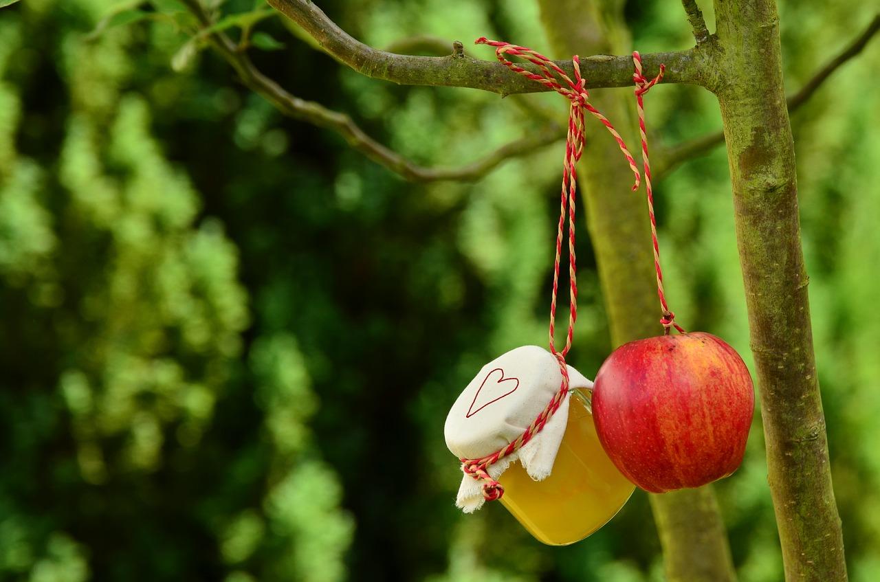 Schöne Ideen für ein Apfelkompott Rezept
