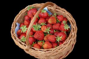 Erdbeer-Grapefruit-Marmelade einkochen
