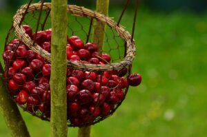 Marmeladen Rezepte Kirschmarmeladen